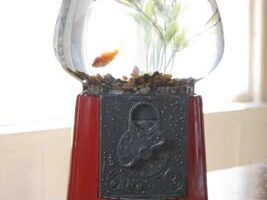 Gumball Machine into a Fish Bowl (she: Brittany)