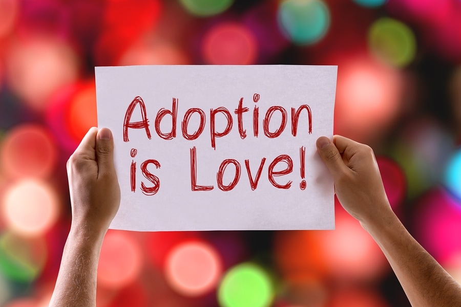 Brenda shares her adoption journey... what a beautiful story! www.orsoshesays.com