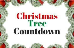 Today I am sharing this little Christmas Tree Countdown that I designed to help with all of my excitement regarding the holidays. #christmastree #christmascountdown #christmastreecountdown #christmas
