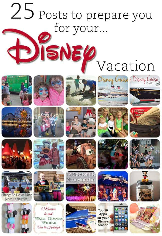 25 Posts to Prepare You for Your Disney Vacation www.oneshetwoshe.com