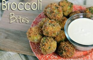 Broccoli Bites with Honey Mustard Dipping Sauce ~ Delicious Appetizer!