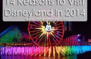 14 Reasons to Visit Disneyland in 2014 www.oneshetwoshe.com