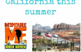 what's hot in southern california this summer