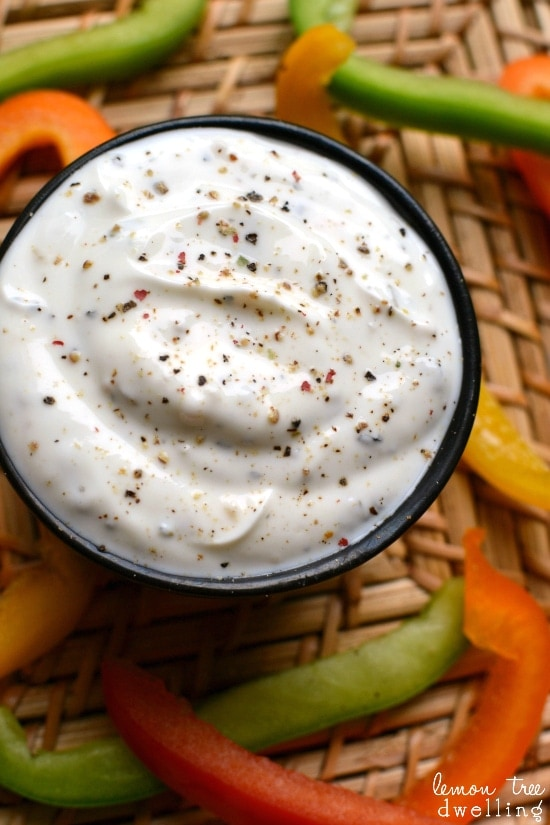 Skinny Greek Yogurt Dip - a delicious and perfectly good for you summer snack! www.orsoshesays.com #greekyogurtdiprecipe #greekyogurtdip #greekyogurt #yogurtdip #yogurt #dip #familyrecipe #easyrecipe #appetizer #recipe #ldsblogger #lds #mormonblogger #mormon #familyideas