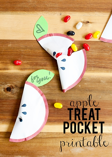 apple party favor pocket