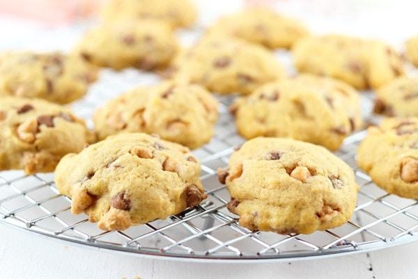 Pumpkin Butterscotch Pudding Cookies