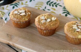 Apple Cinnamon Bran Muffins