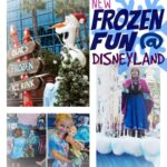 Frozen at Disneyland; an Insider's Tips and Tricks (she: Kim)