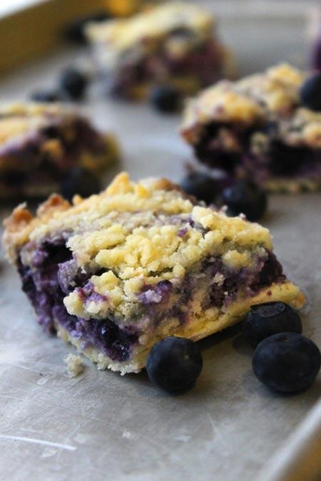 Blueberry Bars – An Easy, Warm Winter Treat (she: Christina)