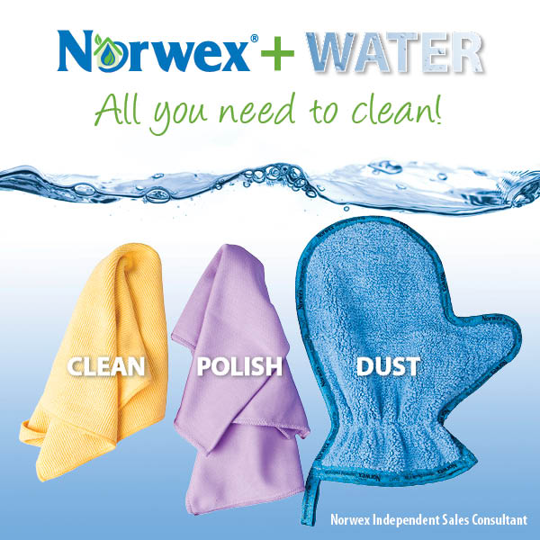 Norwex has the best cleaning products EVER!!