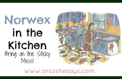 norwex kitchen cloth