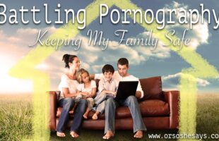 Battling Pornography in My Home ~ Protecting My Family ~ (he: Dan) Or so she says...