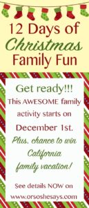 Get Ready for the 12 Days of Christmas Family Fun!!
