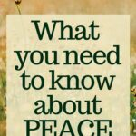 feeling peace in troubled times