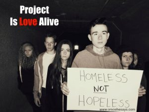 project is love alive