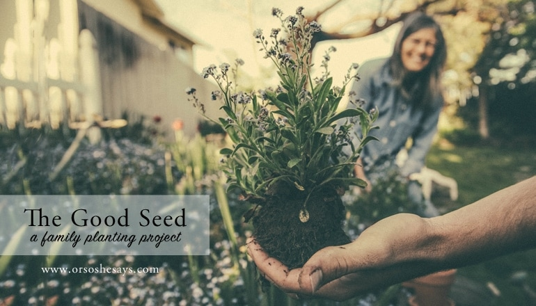 The Good Seed- Help your family better understand the principle of faith with this planting project. Find the idea and free printable on www.orsoshesays.com.