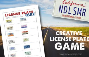 Creative License Plate Game – Decipher the Hidden Message! (she: Rachel)