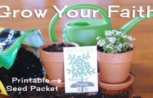 Growing Faith In Jesus: Faith Seeds Activity (she: Adelle)
