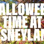 Disneyland Halloween Time 2017 – The SCARY and Not So Scary (she: Kimberly)