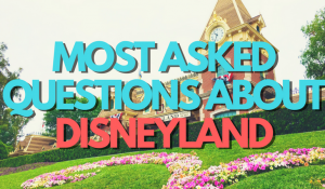 The Most Frequently Asked Questions About Disneyland (she: Kimberly)