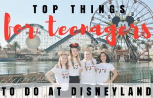 Family Vacation Destination – Disneyland for Teens