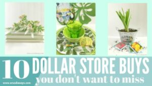 Things to Buy at the Dollar Store – 10 Items You Don't Want to Overlook!