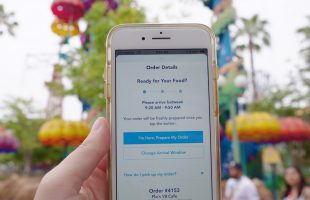 Disney Mobile Ordering – 5 Tips for Mobile Ordering at Disneyland