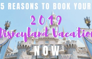 With Star Wars at Disneyland: Galaxy's Edge opening, we know it's going to be more popular then ever before. Keep reading to see a few other reasons why you should book for 2019 NOW! www.orsoshesays.com #osssdoesdisney #osss #disney #starwars #vacation #disneyland #familyvacation #mormonblogger #mormon #ldsblogger #lds