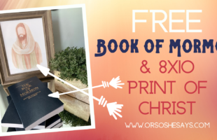 Free Book of Mormon and Watercolor Print of Christ www.orsoshesays.com