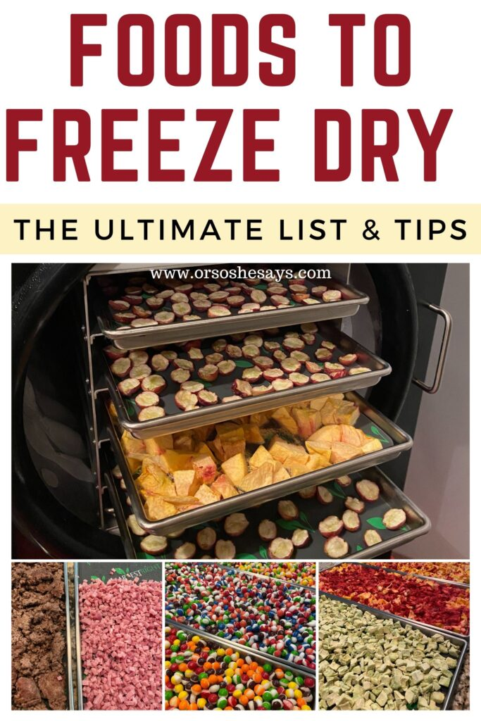 foods to freeze dry